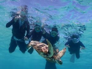 宮古島で家族みんなでシュノーケルで海亀