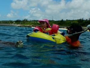 3歳で海亀を見る