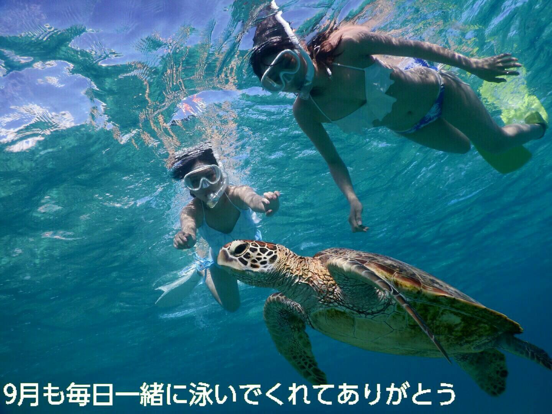 まだまだ宮古島はビキニでウミガメとシュノーケリングできるよ