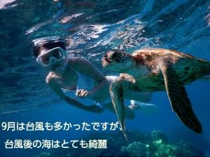 台風後の宮古島シュノーケルはすみわたる海の世界