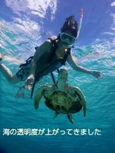 宮古島10月のシュノーケリングは透明度アップ
