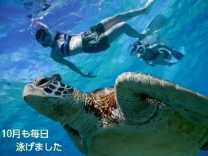 2016年10月も毎日宮古島でウミガメとシュノーケル