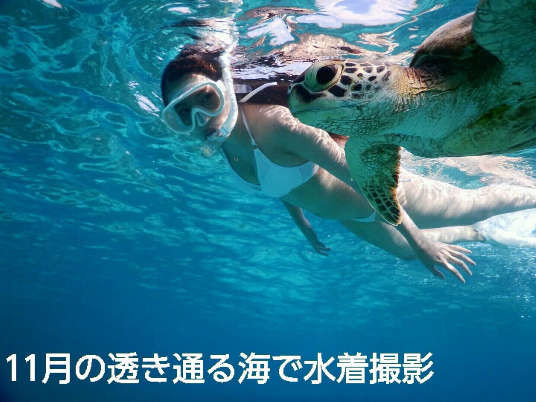 白い素敵なビキニで宮古島でウミガメと泳ぐ