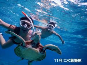 宮古島のウミガメと同じポーズで
