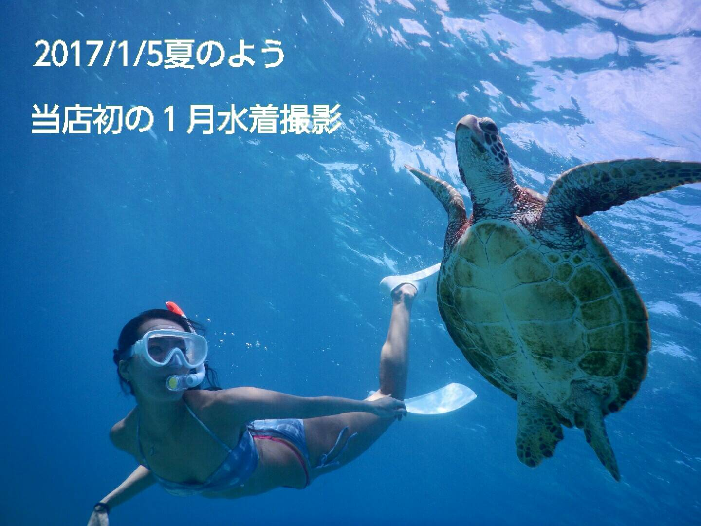 1月に初のウミガメと宮古島で水着撮影