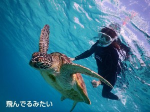ウミガメと宮古島で空飛ぶシュノーケル