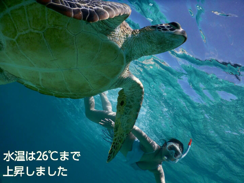 宮古島シュノーケルは水温上昇中