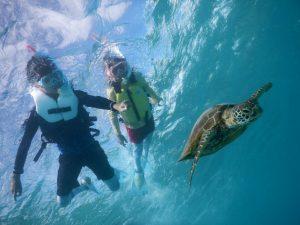 宮古島の夏休みウミガメと