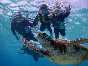 冬休みお子様もウミガメを見にシュノーケリング