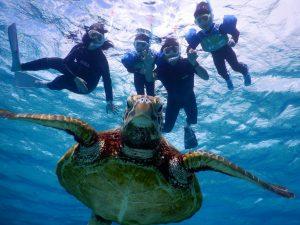 もうすぐ春休み是非宮古島でウミガメとシュノーケリングを