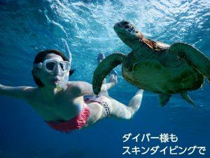 スキンダイビングでウミガメと宮古島で
