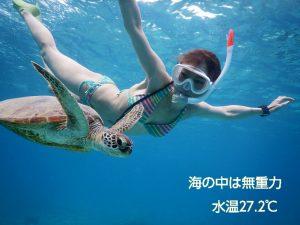 宮古島ウミガメと無重力シュノーケリング