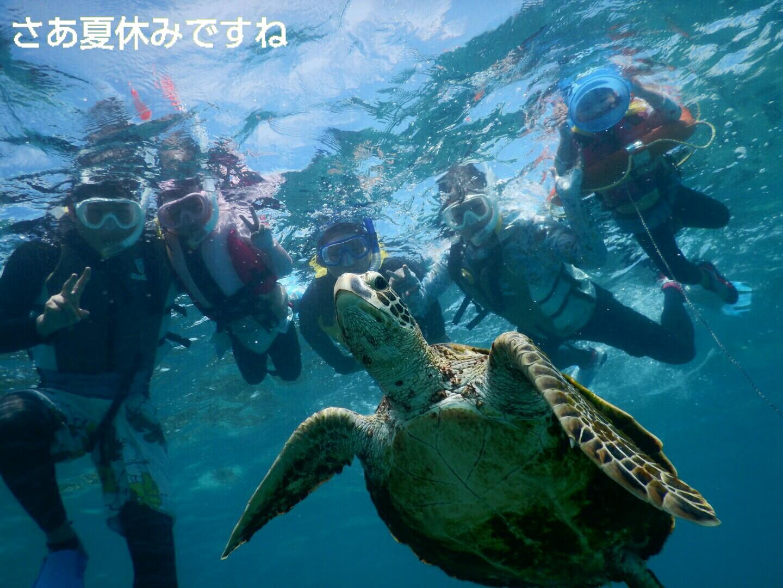 宮古島の夏休みウミガメとみんなでシュノーケル