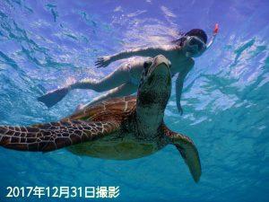 年末の宮古島でウミガメとビキニ撮影2017