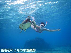 宮古島で初の2月ウミガメと泳ぐフォトツアー水着撮影
