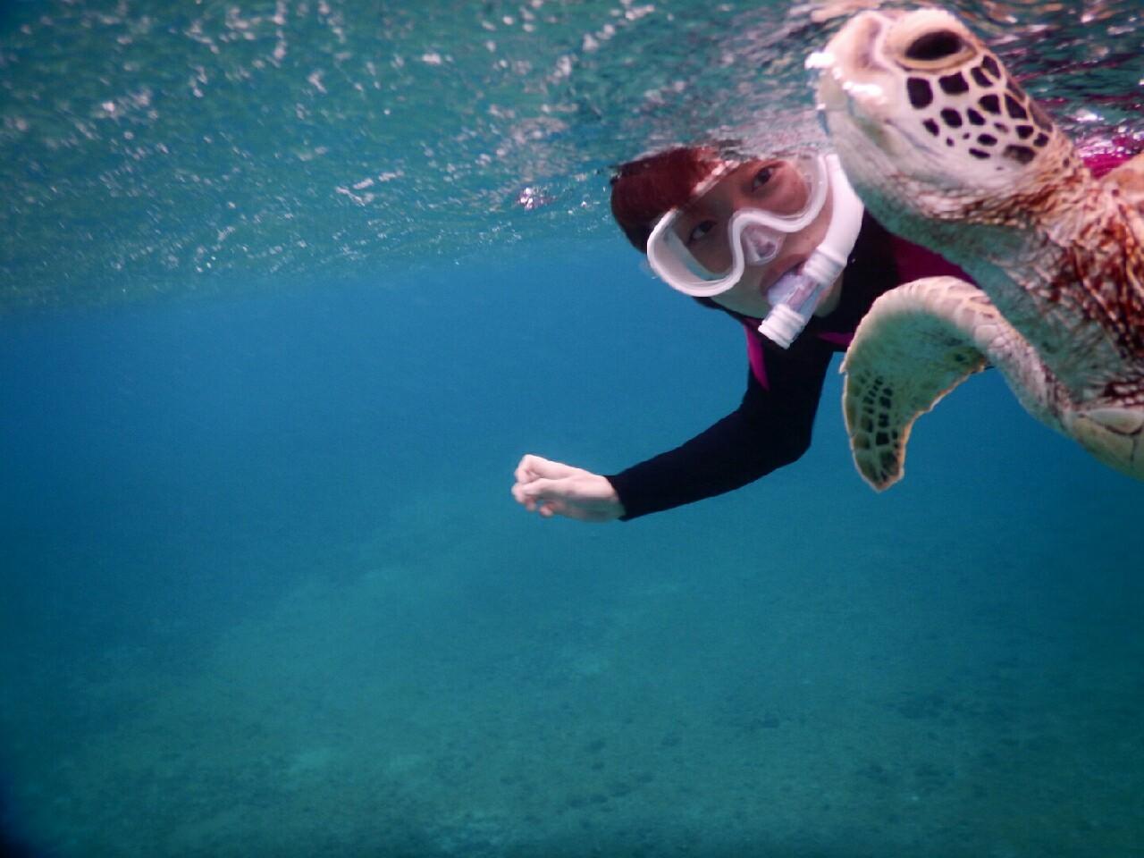 宮古島シュノーケルツアーでウミガメの表情