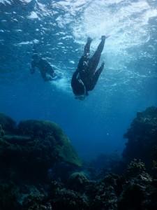 深い青に向かいシュノーケルで潜る