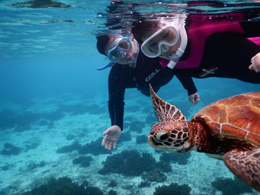 二人仲良くウミガメツアーで横泳ぎ