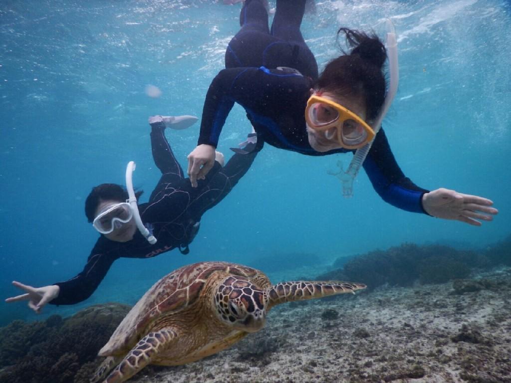一緒にシュノーケル外してウミガメと遊ぶ
