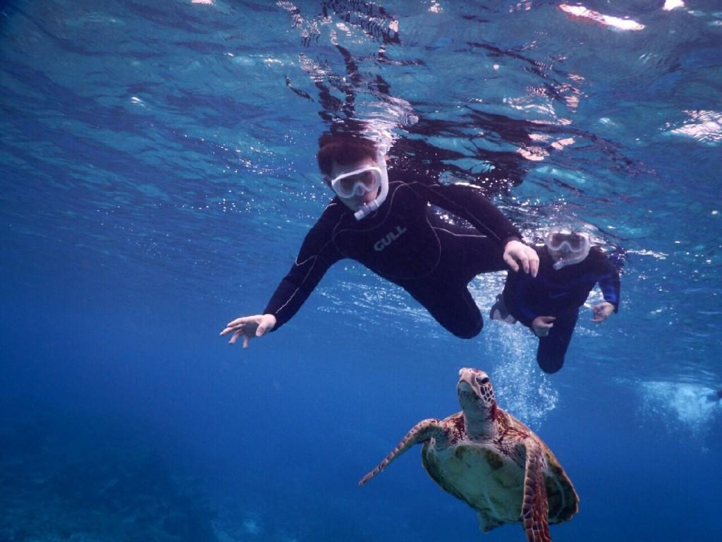 泳ぎが上手でシュノーケルも上手