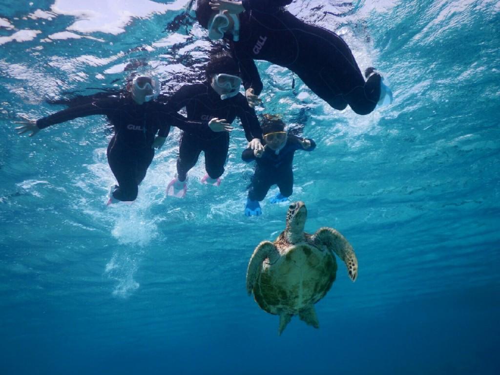 卒業旅行はウミガメと宮古島シュノーケル