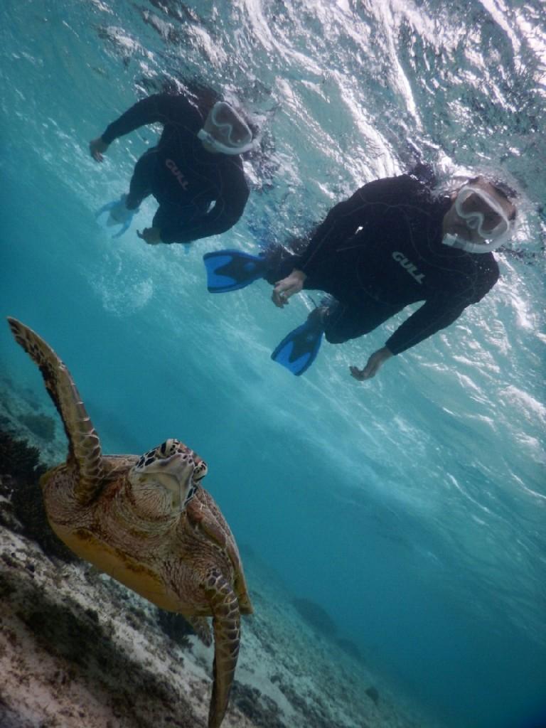 宮古島亀カメでシュノーケル