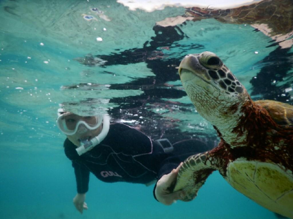 ウミガメに寄り添うシュノーケル宮古島
