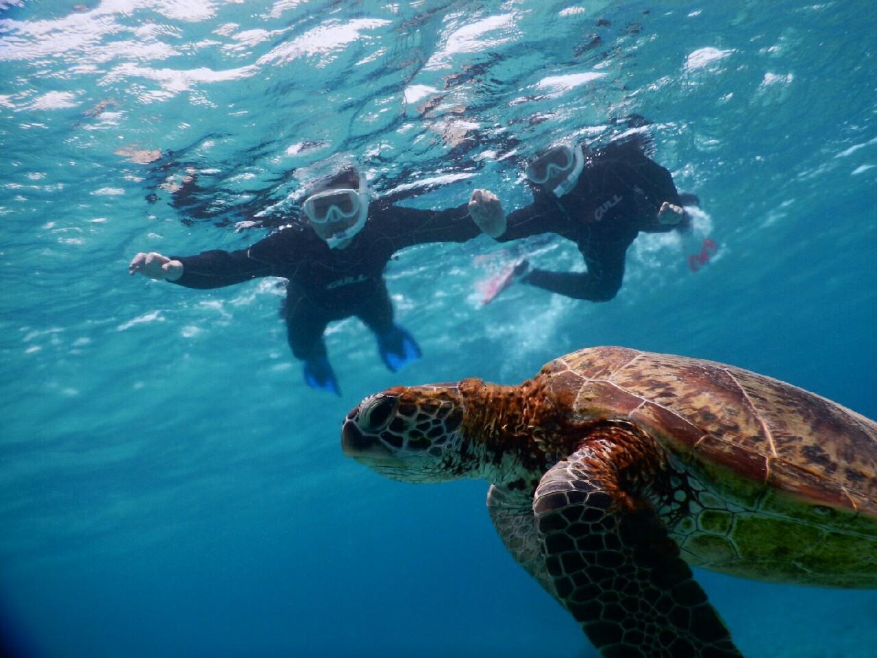 透明度がすごい宮古島の海は