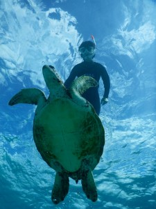宮古島の海の透明度