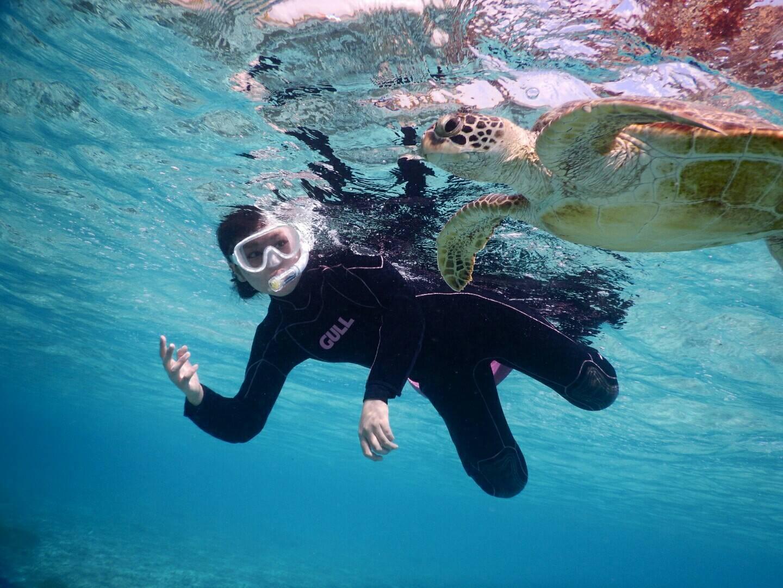 宮古島ウミガメと手がつなげそうなシュノーケル