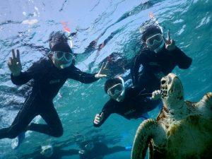 宮古島への社員旅行はウミガメとシュノーケルで決まり