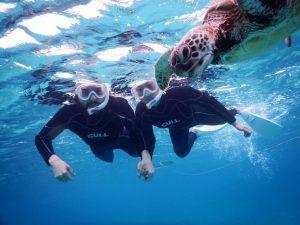 カナダから宮古島にウミガメに会いに
