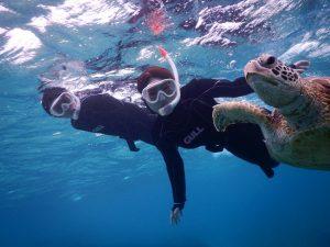 宮古島でのシュノーケルをより楽しくするウミガメスキンダイビング