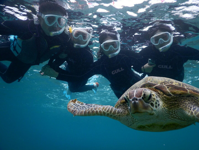 宮古島で四人でウミガメと撮影
