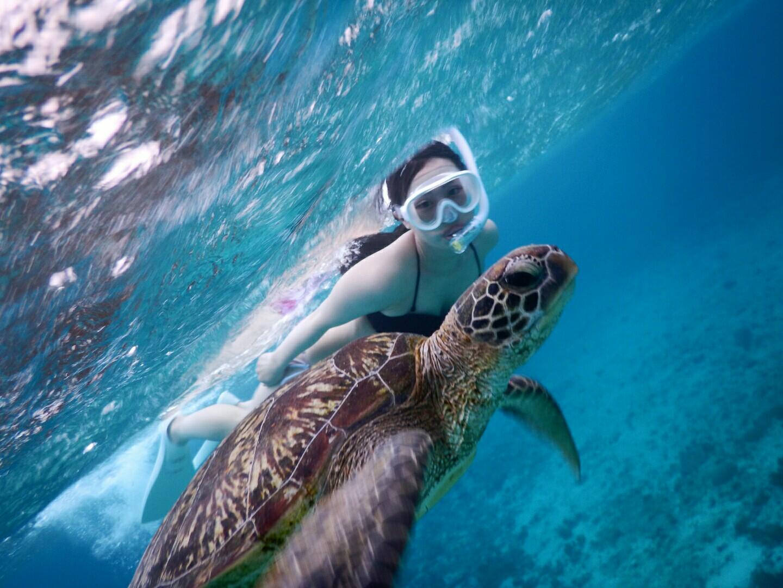 雨の宮古島でもウミガメさんと明るく撮影