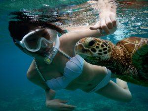 シュノーケルでハートのウミガメと宮古島で泳ぐ