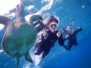 雨の日には是非宮古島でウミガメとシュノーケリングを