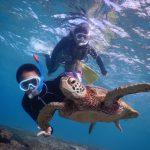ウミガメと小学生でもシュノーケルとスキンダイビング
