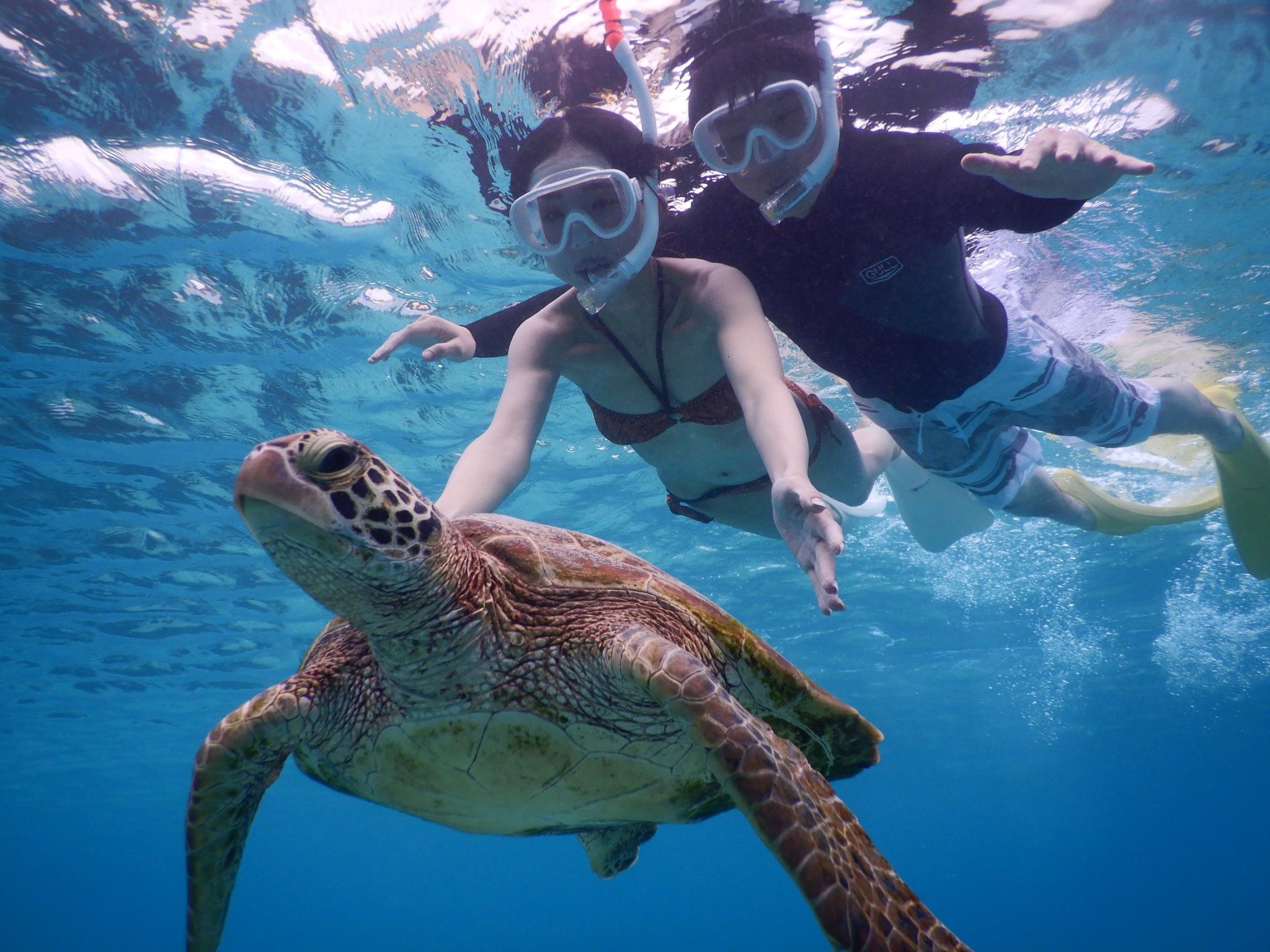 冬でも工夫して宮古島ウミガメシュノーケル水着撮影できますよ